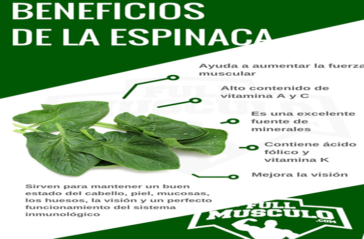 Espinaca 2 beneficios listo
